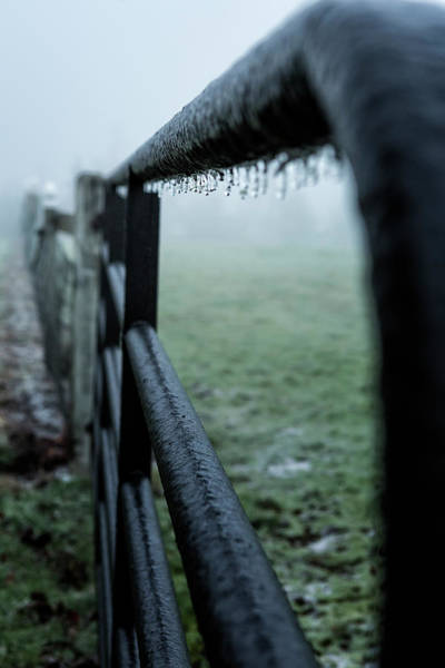 Photograph - A Fence In Freezing Fog by Belinda Greb
