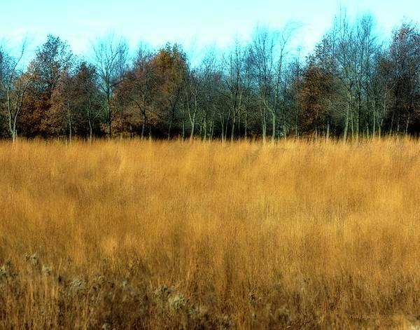 A Field Of Browns Art Print