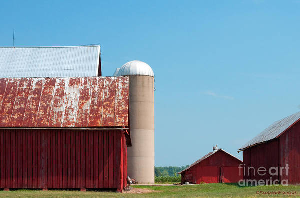 Photograph - A Fine Day For Farming by Paulette B Wright