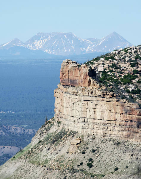 Timberline Photograph - A Fire Scorched Mesa Verde With Alpine Peaks Behind by Derrick Neill