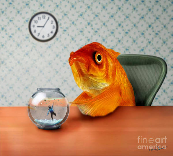 Surreal Mixed Media - A Fish Out Of Water by Carrie Jackson