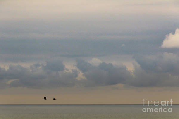 Photograph - A Fleeting Moment by Werner Padarin