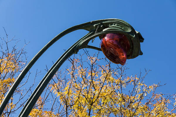 Photograph - A Flower Or A Snake - Sinuously Curved Art Nouveau Light At Paris Metro by Georgia Mizuleva