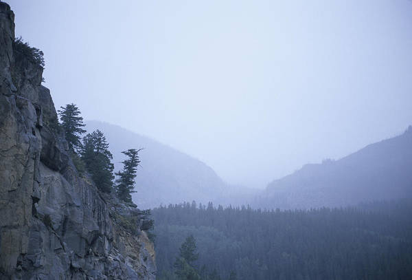 Dread Photograph - A Foggy, Rainy Day In The Rocky by Taylor S. Kennedy