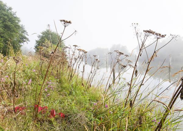 Photograph - A Foggy Summer Morning by Robert Potts