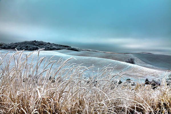 Photograph - A Frosty Morning On The Palouse by David Patterson
