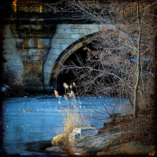 A Frozen Corner In Central Park Art Print