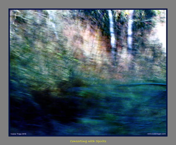 Wall Art - Photograph - A Gathering Of Ghosts  by Jane Tripp
