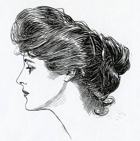 Wall Art - Drawing - A Gibson Girl, 1902 by Charles Dana Gibson