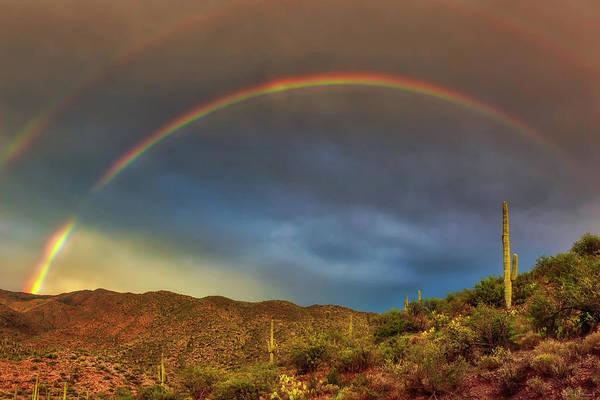 Photograph - A Glorious Surprise by Rick Furmanek