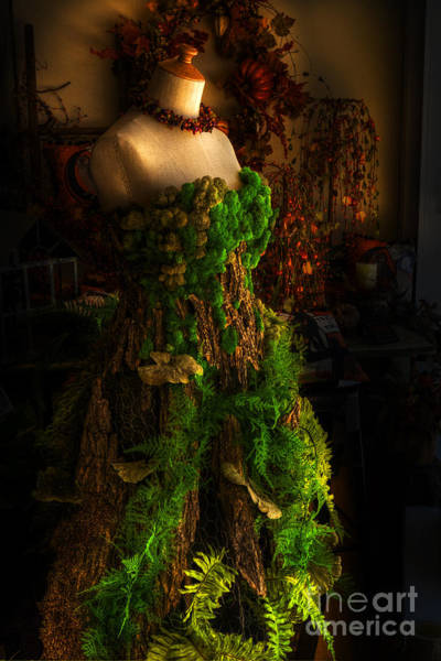 High Dynamic Range Digital Art - A Gown For A Faerie Princess by William Fields