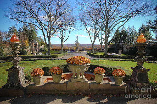 Wall Art - Photograph - A Grand Entrance by Colleen Kammerer