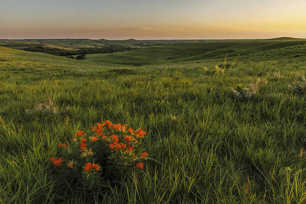 A Great View Of The Flint Hills Art Print