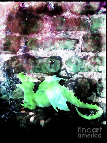 Wall Art - Photograph - A Green Dragon by Tom Gowanlock