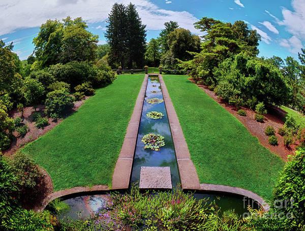 Photograph - A Happy Garden by Mark Miller