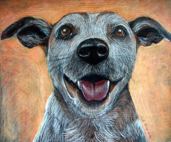 Mutt Drawing - A Happy Mutt by Linda Nielsen