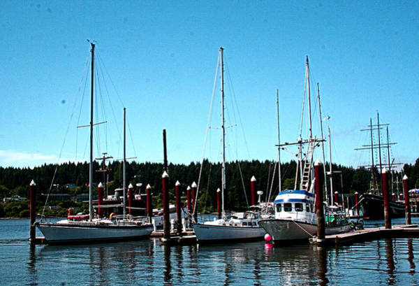 Photograph - A Harbor View - Florence Or by Joseph Coulombe