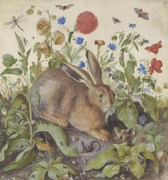 Rabbit Painting - A Hare Among Plants by Hans Hoffman