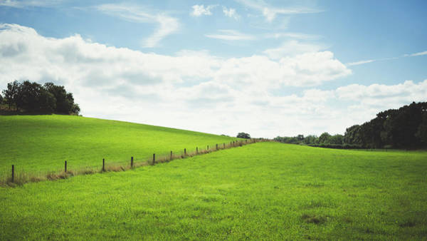 Coverts Photograph - A Hill Of Two Halves by Chris Dale