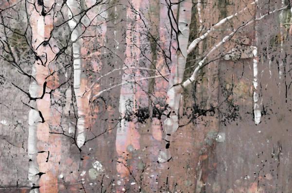 Photograph - A Hint Of Pink by Tara Turner