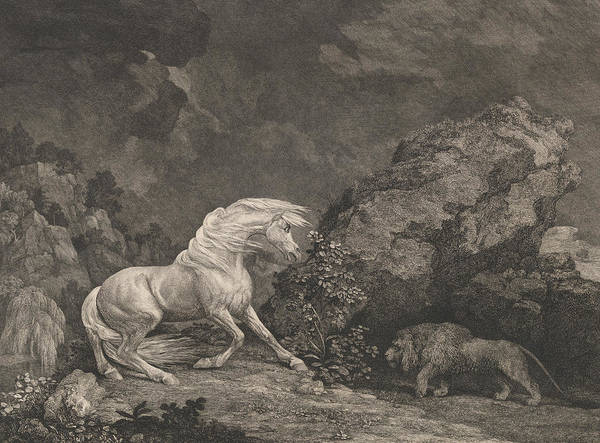 Relief - A Horse Affrighted By A Lion by George Stubbs