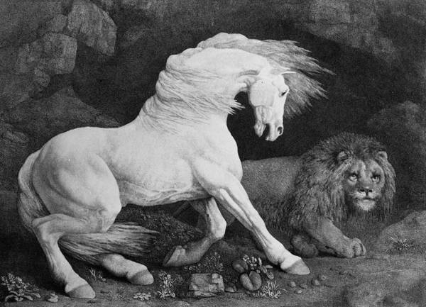 A Horse Affrighted By A Lion Art Print