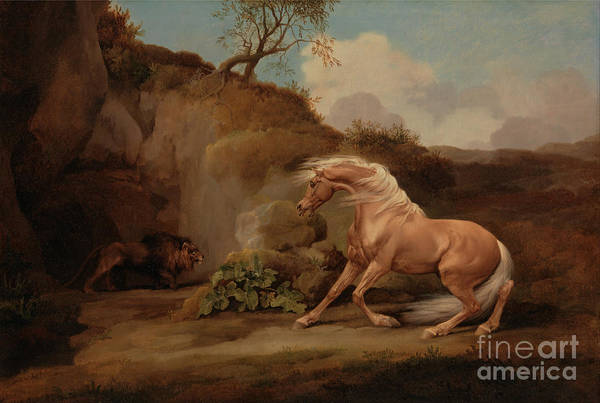 Painting - A Horse Frightened By A Lion Animals by Celestial Images