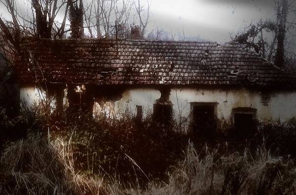 Crumble Photograph - A House In The Woods by Mimulux patricia No