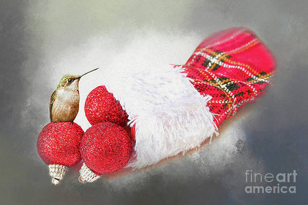 Unusual Perspective Wall Art - Photograph - A Hummer Of A Christmas by Darren Fisher