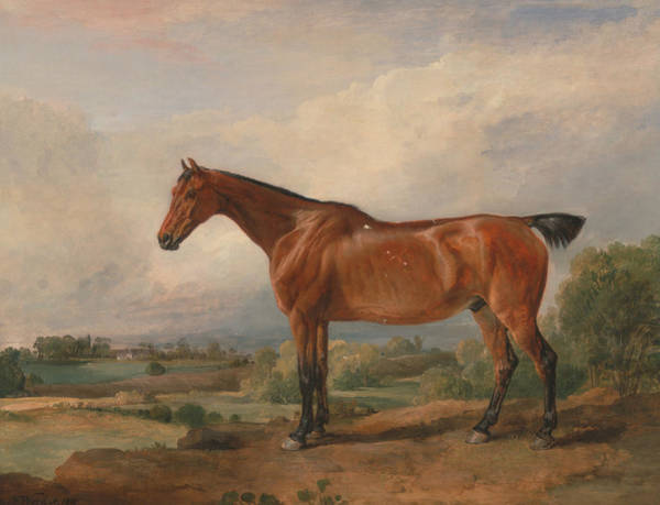 Ward Painting - A Hunter In A Landscape by James Ward