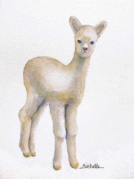 Alpaca Painting - A Is For Alpaca by Richelle Siska