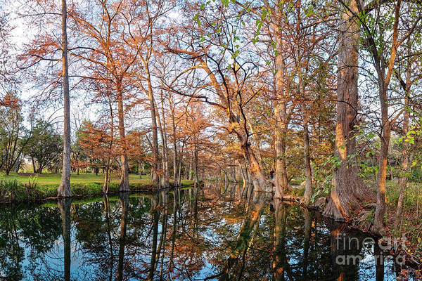 Photograph - A Late Afternoon Photograph Of Blue Hole Regional Park In Wimberley - Texas Hill Country by Silvio Ligutti