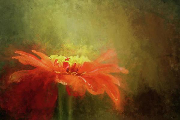 Photograph - A Little Orange Wildflower by Jai Johnson