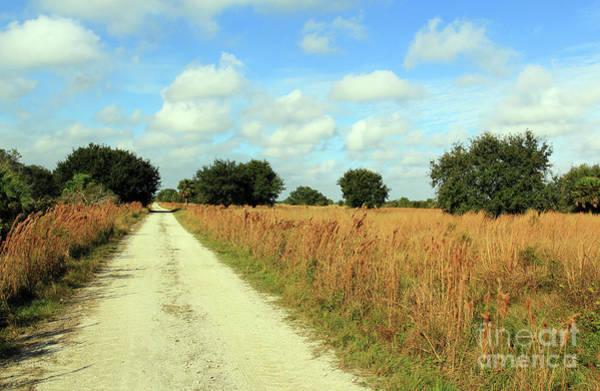 Photograph - A Long Empty Road by Jennifer Robin