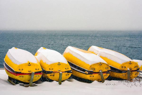 Photograph - A Long Winter's Nap by Todd Klassy