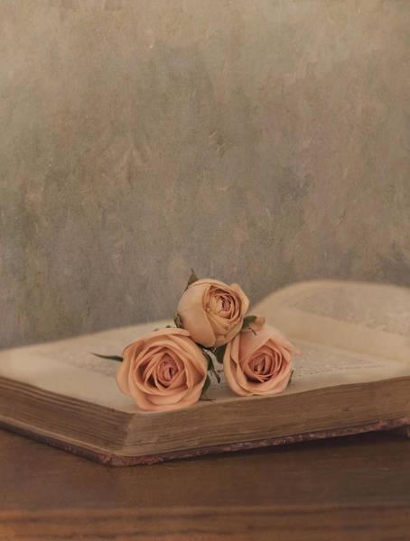 Photograph - A Love Story by Kim Hojnacki