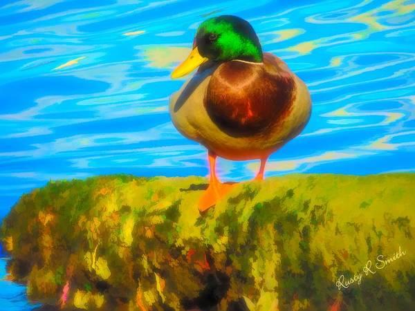 Digital Art - A Male Mallard Duck Posing For His Portrait. by Rusty R Smith