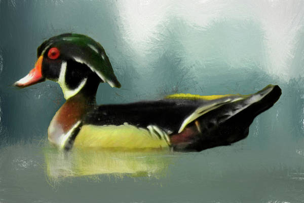 Digital Art - A Male Wood Duck Portrait. by Rusty R Smith
