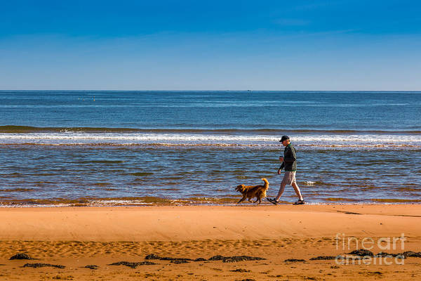 Photograph - A Man And His Dog by Roger Monahan