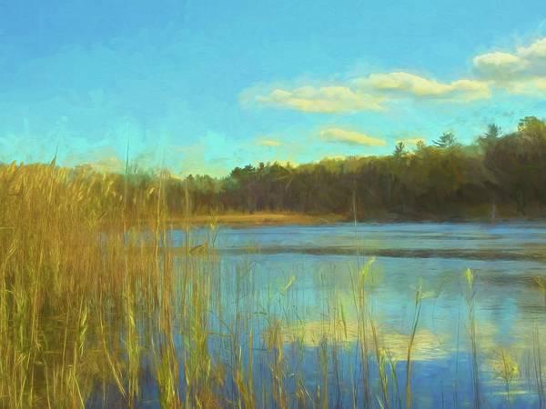 Digital Art - A Marsh In Late Fall by Rusty R Smith