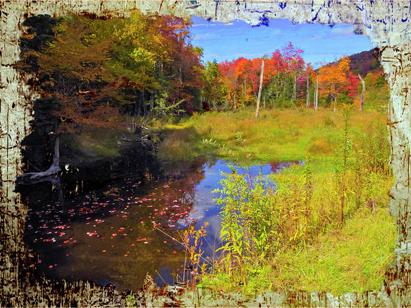 Photograph - A Meadow Surrounded By Autumn Foliage. by Rusty R Smith