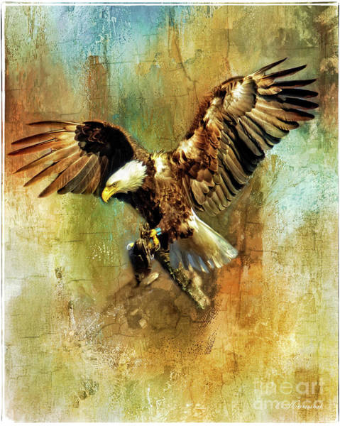 Photograph - A Mighty Wingspan by Eleanor Abramson