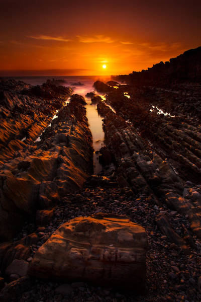 Montana De Oro State Park Photograph - A  Moment Of Gold by Dan Holmes
