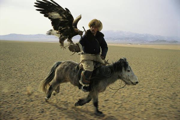 Ethnic Minority Photograph - A Mongolian Eagle Hunter In Kazahkstan by Ed George