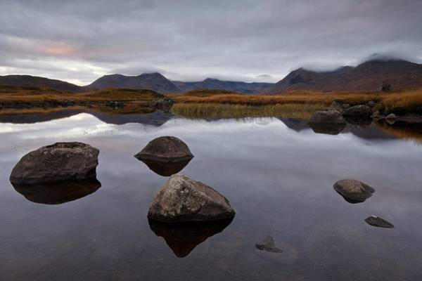 Photograph - A Moody Dawn On Rannoch Moor by Stephen Taylor