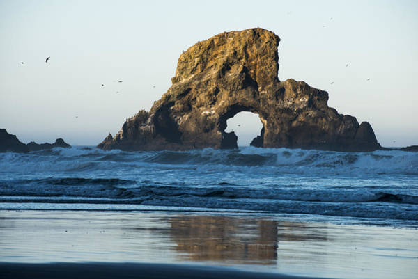 Photograph - A Natural Arch by Robert Potts
