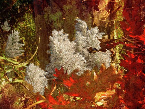 Photograph - Autumn Still Life by Rusty R Smith