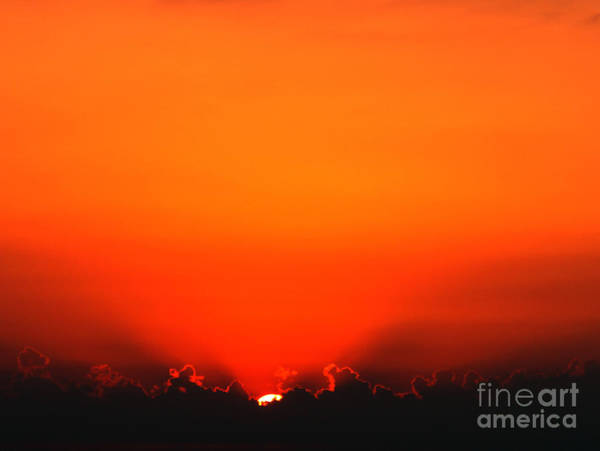 Wall Art - Photograph - A New Day by Amanda Barcon