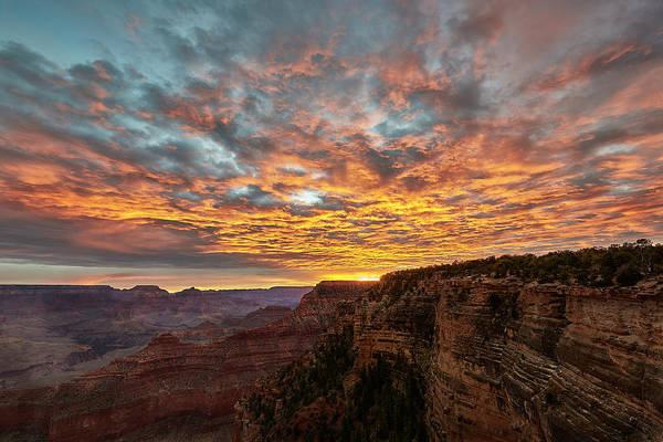 Photograph - A New Day In The Canyon by Jon Glaser