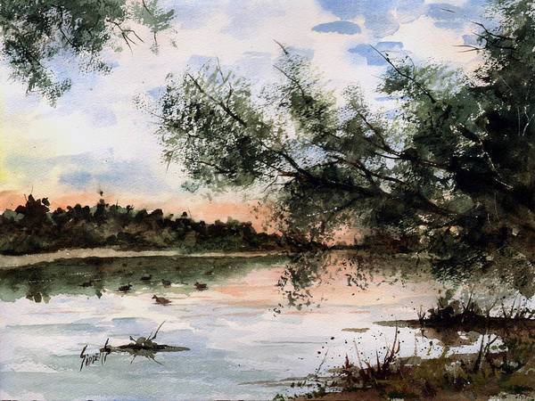 Water Fowl Painting - A New Day by Sam Sidders